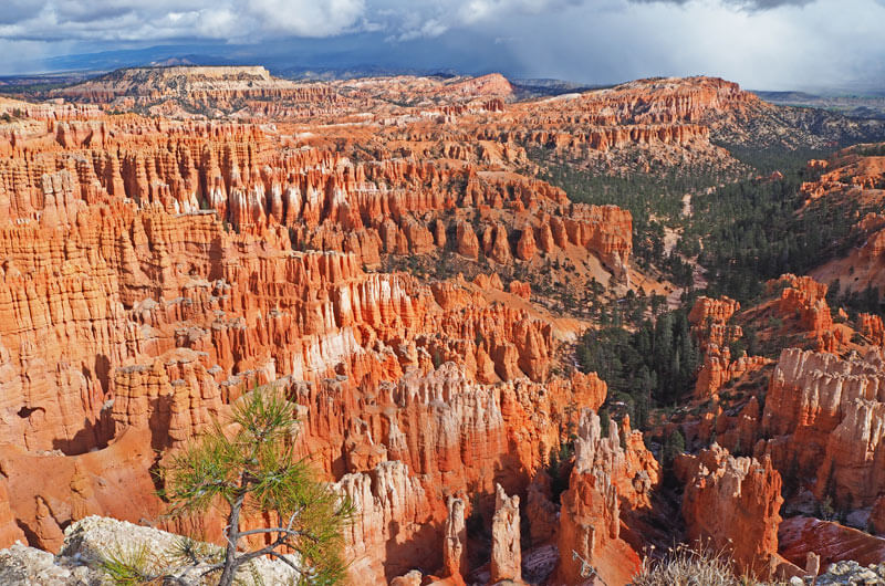 Türmchen im Bryce Canyon
