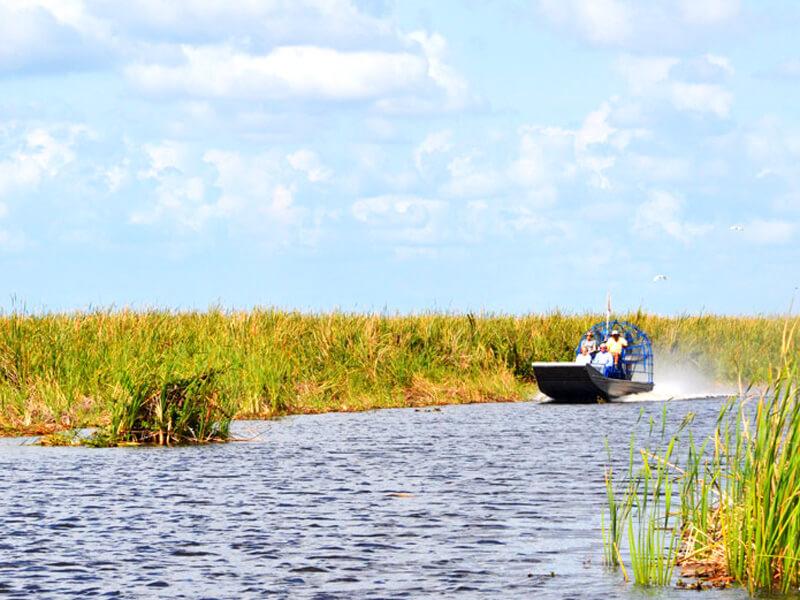 Airboat Tour in den Everglades