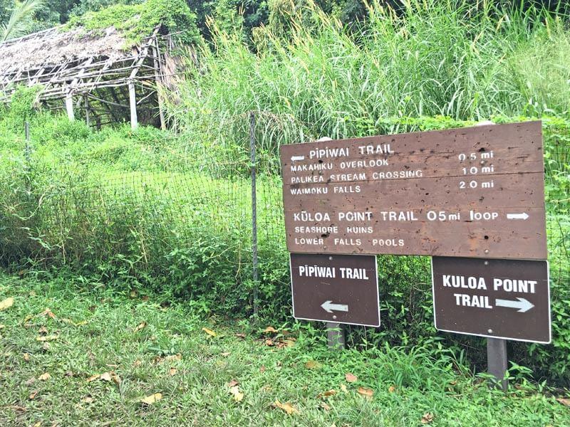 Highway to Hana Wanderwege