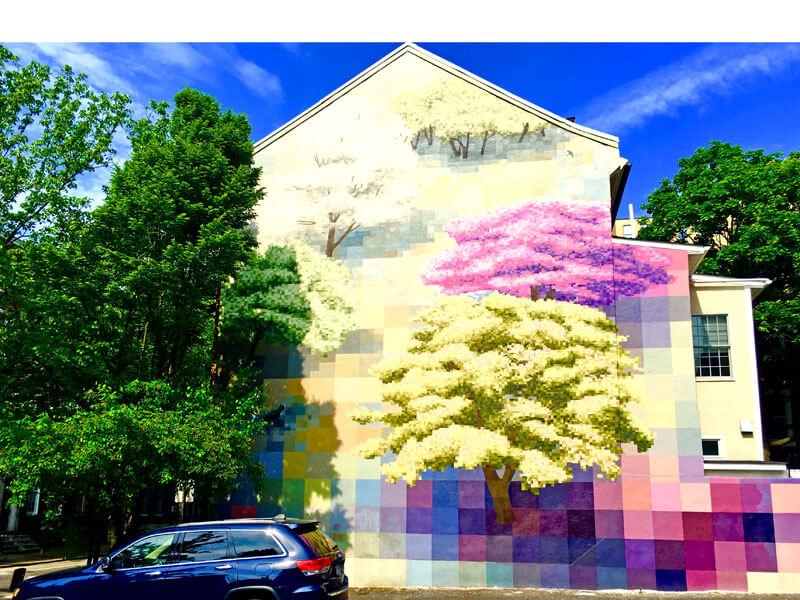 Blumen am Haus in Philadelphia
