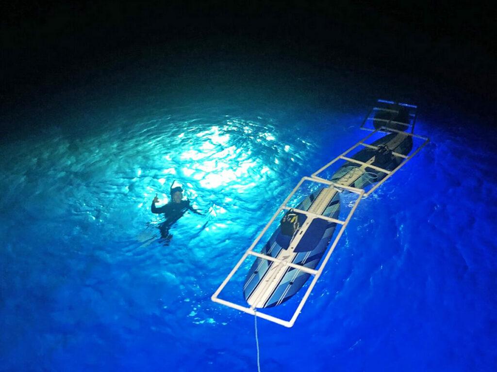 Schnorcheln mir Rochen bei Nacht im Wasser