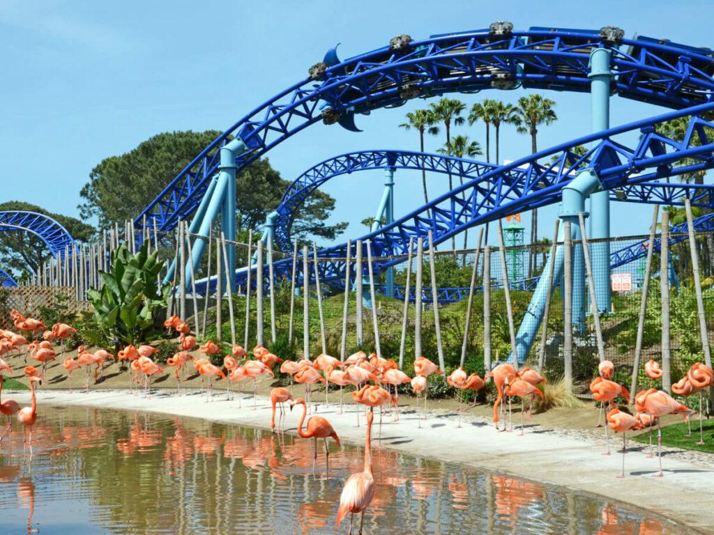 SeaWorld San Diego Achterbahn