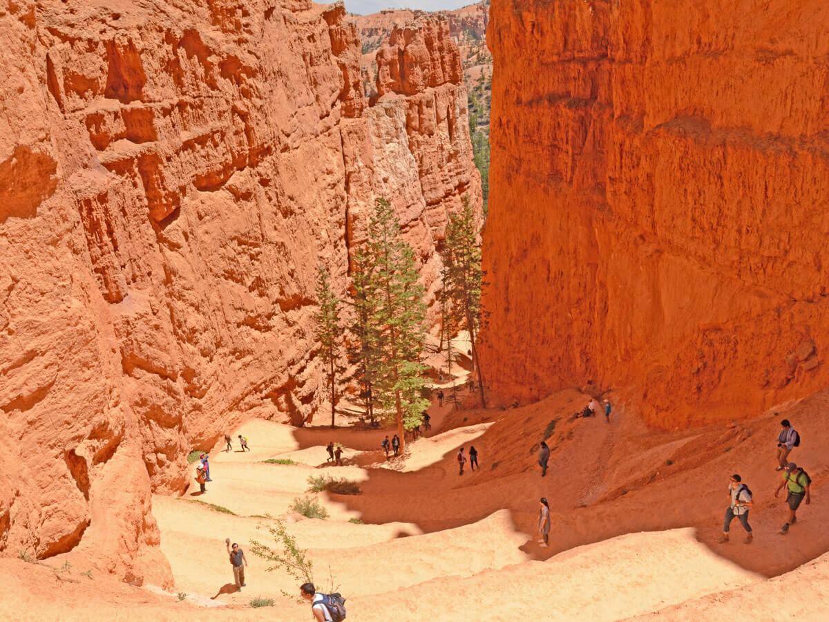 Zick Zack Wanderweg Bryce Canyon