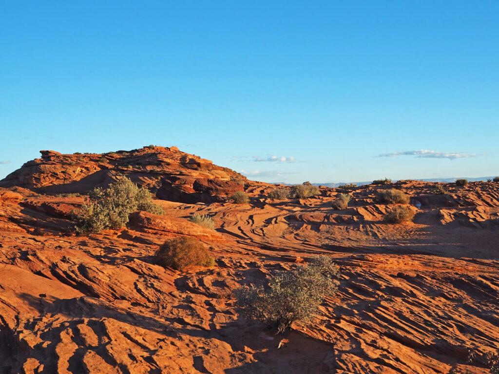 Wüstenlandschaft bei Page am Horseshoe Bend