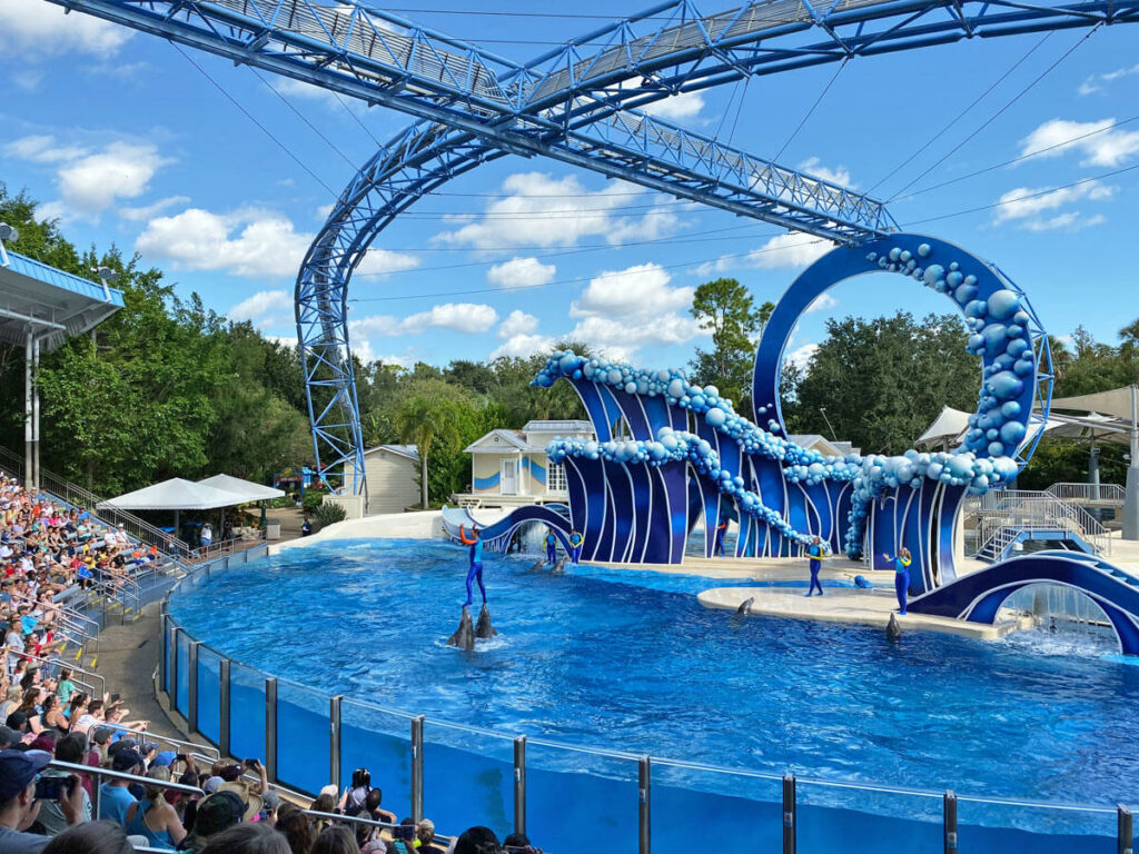Delfin Show im Seaworld