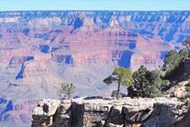 Die No. 1 Sehenswürdigkeit im Südwesten der USA - Der Grand Canyon