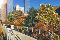Hight Line Park Weg