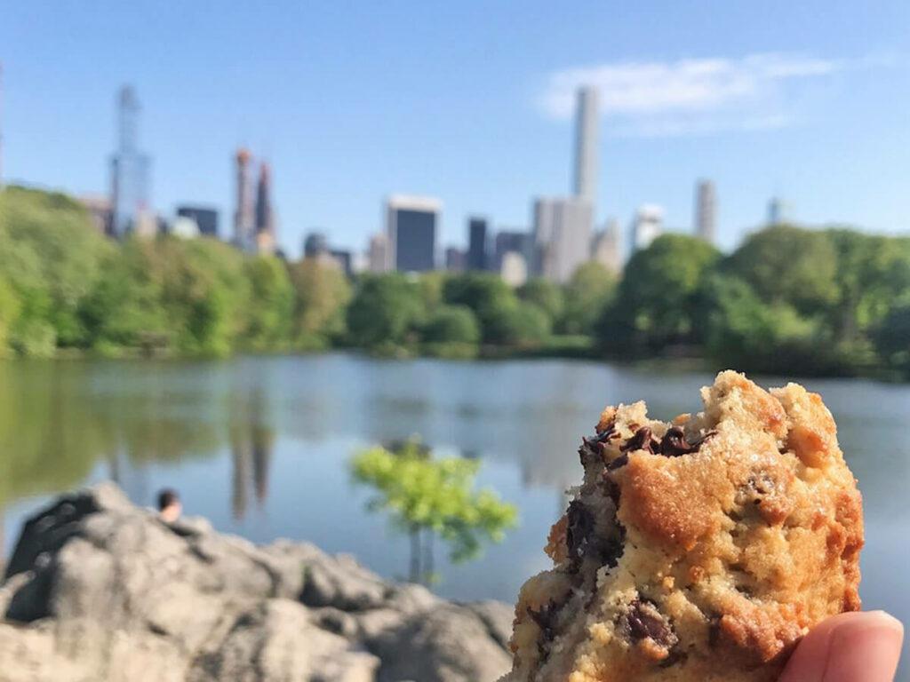 Muffin im Central Park mit der Skyline von New York im Hintergrund