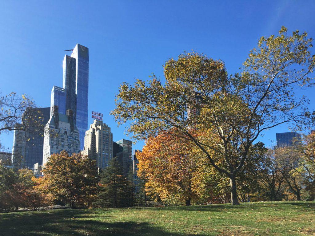 Blick auf das ESSEX Haus am Central Park